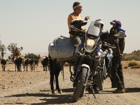 Marokko 2014 - 397