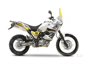 Tenere 660 Rally Yellow dirt